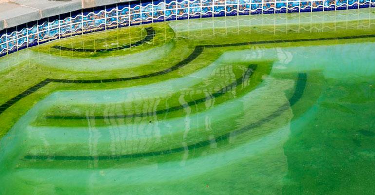Limpieza de piscinas en Málaga